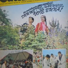 HOPCT REVISTA CUTEZATORII NR 27 - 4 IULIE 1974 - Revista scolara