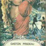 Gaston Pradeau - DESFRIU SI ISPASIRE - Roman, Anul publicarii: 2015