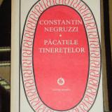 CC19 - PACATELE TINERETILOR - CONSTANTIN NEGRUZZI - EDITATA IN 1983 - Roman