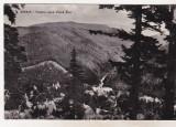 Bnk cp Sinaia - Vedere spre Valea Rea - necirculata