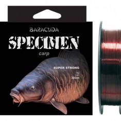 Nylon Baracuda Specimen crap 300m - Fir Pescuit