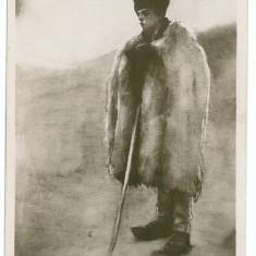 698 - Arges, Cioban din MUSCEL - old postcard - used - 1917