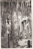 Bnk cp bucuresti - muzeul grigore antipa - vedere din pestera - necirculata