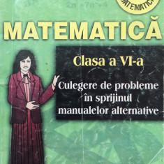 MATEMATICA CLS VI Culegere probleme in sprijinul manualelor alternative - Burtea - Culegere Matematica