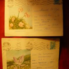 5 Intreguri Postale - FLORA ,  1964- 1967