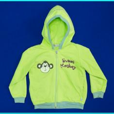 IMPECABIL _ Hanorac bumbac, tema Sweet Monkey, frumos MDADA _ baieti | 3 - 4 ani, Marime: Alta, Culoare: Verde