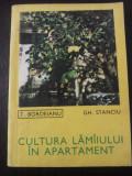 CULTURA LAMAIULUI IN APARTAMENT -- T. Bordeianu, Gh. Stanciu -- 1969, 93 p., Alta editura