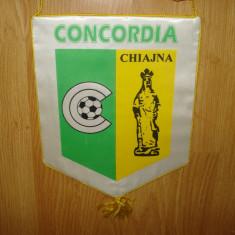 FANION CONCORDIA CHIAJNA CU AUTOGRAFE