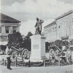 2535 - SATU MARE, statue - old postcard - unused - Carte Postala Maramures 1904-1918