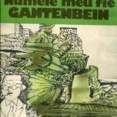 Max Frisch - Numele meu fie Gantenbeim