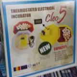Clocitoare / Incubator oua calitate super