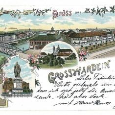 2516 - L i t h o, ORADEA, Synagogue - old postcard - used - 1898 - Carte Postala Crisana pana la 1904