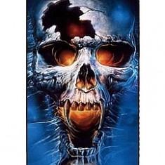 Toc silicon Jelly Case Skull Nokia Lumia 520 - Husa Telefon Nokia, Husa
