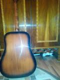 Vand chitara acustica reghin, Hora