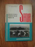 CRESTEREA TINERETULUI PORCIN SFATURI