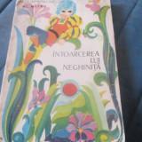 ALEXANDRU MITRU - INTOARCEREA LUI NEGHINITA - Carte de povesti