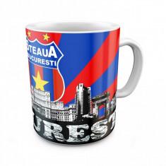 Cana alba Steaua Bucuresti 1