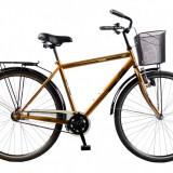 Biciclete DHS de oras