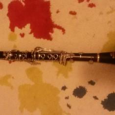 Vand Clarinet Altele Roy Benson