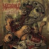NECROVILE (Romania) -Engorging the Devourmental CD 2013 (Brutal Death Metal)