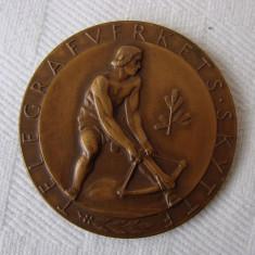 Medalie sportiva din bronz - anul 1952 (3), Europa