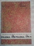 ALIN CAILLAS - POLENUL
