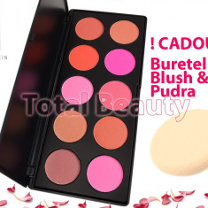 Trusa paleta blush 10 culori Fraulein38 Germania fard obraz + CADOU Buretel