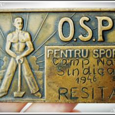 PLACHETĂ SPORTIVĂ DE BRONZ: OSP, CAMPIONATELE NAȚIONALE SINDICALE, REȘIȚA, 1946! - Medalii Romania