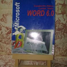 """Constantin Aldica - Microsoft Word 6.0 """"A630"""""""