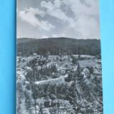 HOPCT 7115 POIANA TAPULUI -VEDERE SPRE ZAMORA RPR [CIRCULATA]