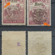 RFL 1919 ROMANIA emisiunea Oradea seceratori 2x 3 bani erori nestampilate - Timbre Romania