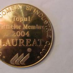 "MMM - Medalie ""LAUREAT 2004 Topul Firmelor Membre Camera de Comert Cluj"" bronz"