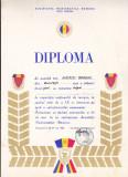 Bnk div - Lot 4 diplome expozitii numismatice - Expozitii insigne Timisoara