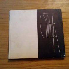 PILIUTA - album, text: Mircea Grozdea - 1980 - 41 p.+ 44 planse - Album Pictura
