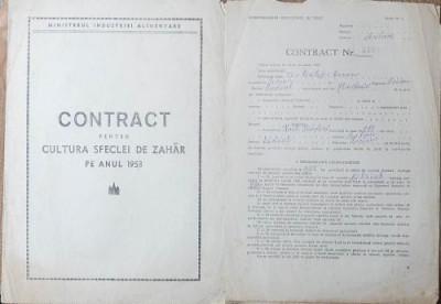 Contract pentru cultura sfeclei de zahar pe anul 1953 foto