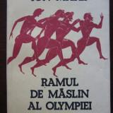 Ramul de maslin al Olympiei - Ion Matei - Istorie