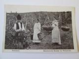 C.P. FOTOPRINT BUKAREST CULESUL VIILOR OCUPATIA GERMANA, Circulata, Printata, Germania