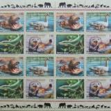 NATIUNILE UNITE GENEVA 2000 - FAUNA PROTEJATA 1 M/SH, NEOBLITERATA - E1599B