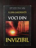 VOCI DIN INVIZIBIL -- Florin Gheorghita -- 1995, 224 p.