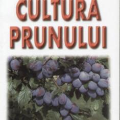 Lenuta Chira - Cultura prunului - 458