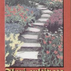Elena Selaru - Flori cultivate in gradina - 480