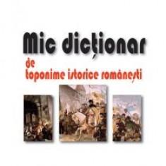 Nicolae Constantin - Mic dictionar de toponime istorice romanesti - 10850 - DEX