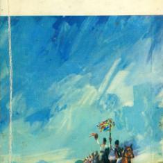G. Cosbuc - Fire de tort (15) - 26564 - Roman, Anul publicarii: 1966