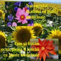 Jaap Huibers - Tratamentul ficatului cu plante medicinale. Cum sa tratam ochii, pilelea si rinichii cu plante medicinale - 5985