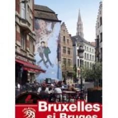 Adina Baranovschi - Bruxelles si Bruges - 8741 - Harta Europei