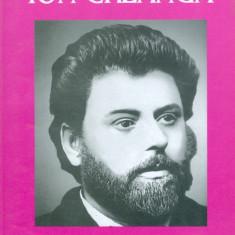 Ion Creanga - Amintiri din copilarie. Povesti. Povestiri - 29338 - Carte educativa