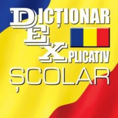 Sorina Barbu - Dictionar explicativ scolar - 6550 - DEX