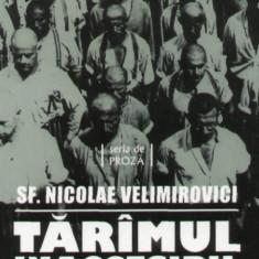 Sf. Nicolae Velimirovici - Taramul inaccesibil - 1425 - Carte Monografie