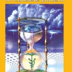 Radu Cinamar - Viitor cu cap de mort: in culisele puterii - 22942