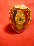 Insigna Militar de Frunte  , metal si email , 3,5 cm